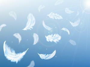 空に羽が浮いているイメージ画像