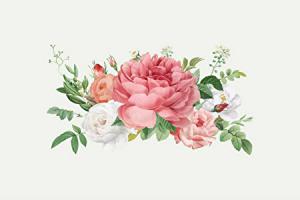 バラのイメージ画像
