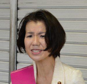 豊田真由子の怪訝な顔