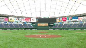 東京ドームの芝